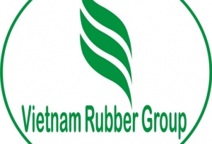 Vietnam Rubber Group